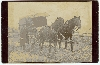 Delivery Wagon Cabinet Card